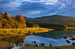 Lakeside Lightshow (Gabriel Tompkins) Tags: park blue autumn trees light sunset sky people usa sunlight lake green fall water beautiful yellow clouds reflections children landscape golden washington flora nikon colorful warm shadows cloudy hills foliage