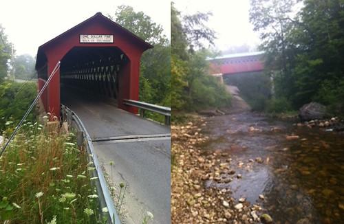 The Fishless Bridge