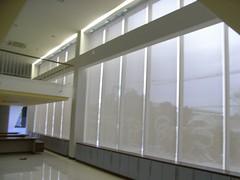 curtain41