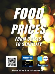 Food Prices (World Food Day 2011)