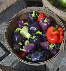 Purple peppers (mmmmarshall) Tags: farmersmarket peppers evanston chicagoist