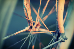 (*m22) Tags: morning bike bicycle wheel sunrise spokes explore crossprocessing favs fahrrad mv ueckermnde
