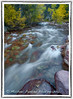 White River Fall 2011 (Michael Pancier Photography) Tags: autumn usa fall river rockies colorado whiteriver rockymountains cascade whiterivernationalforest commercialphotography maroonbellssnowmasswilderness rockymoutains naturephotographer michaelpancierphotography landscapephotographer fineartphotographer michaelapancier lakemaroon wwwmichaelpancierphotographycom fall2011