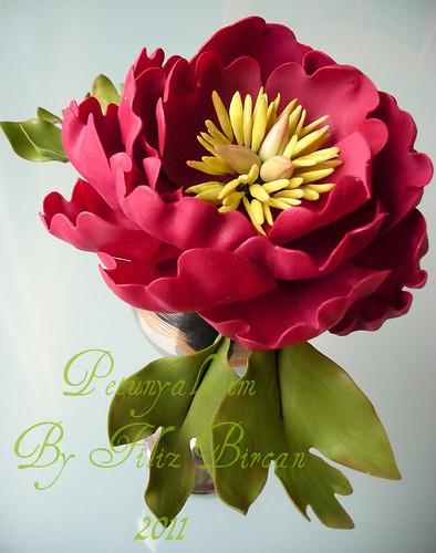 SAKAYIK (Pfingsrosen aus Blütenpaste)
