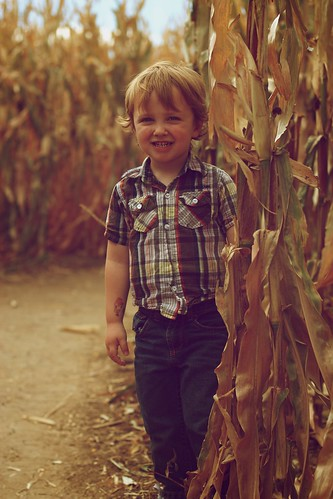 Braxton's 1st Corn Maze by Chadwick_Paul