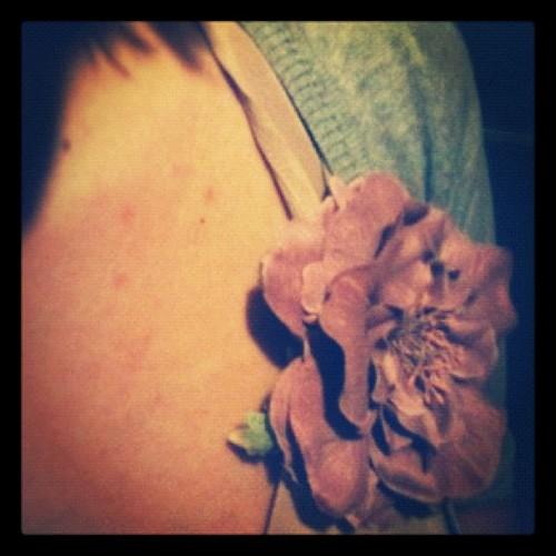 Hoy mi flor ha triunfado... by rutroncal