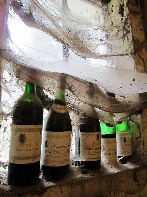 Wine Bottles & 40-Year Old Cobwebs at Muratie