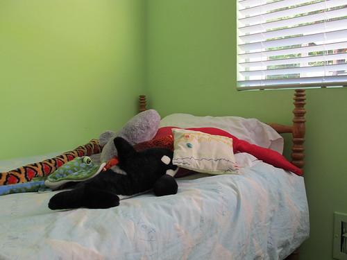 dieter's bed