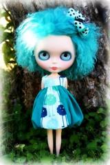 Blue Eddy 136/365 BL♥VED