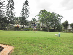 WAIKELE COUNTRY CLUB 069