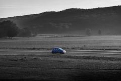 FIAT 500 TWINAIR + (Mark Twin) Tags: fiat500 fernandoalonso twinair fiat500twinair flèchebleue