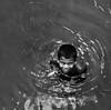 His Kingdom (bijoyKetan) Tags: portrait white black monochrome kingdom his bangladesh ketan panchagarh bijoyketan tamro1750mmvc