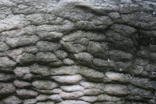 crazy texture