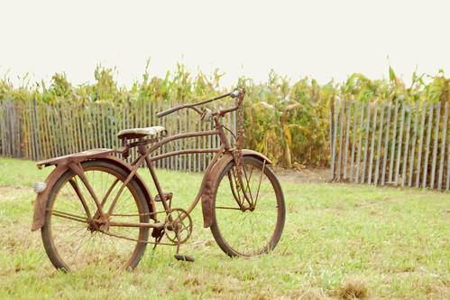 101 copy bike