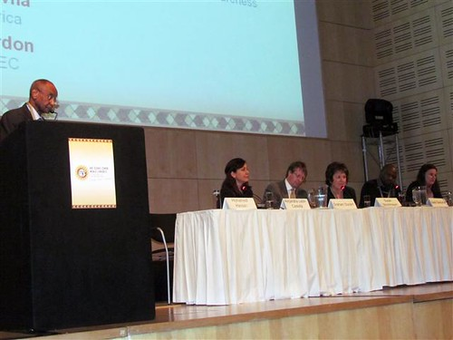 "6SCWC Parallel Session 1.2a ""Building Capacity across Africa: Next steps after the Pre-Congress Workshop"""