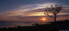 Illa de Arousa / Isla de Arosa (Luis Diaz Devesa) Tags: espaa beach mobile landscape spain rocks rboles mobil playa paisaje galicia galiza nubes pontevedra rocas mvil riasbaixas illade
