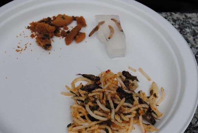 bugfest 2011