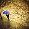 The Blue Umbrella (Visualtricks) Tags: street blue autumn trees man leaves rain yellow square gold crossing 4 tuscany ombrella explorefrontpage idream visualtricks magicunicornverybest magicunicornmasterpiece flypapertextures galleryoffantasticshots ottobre2011winnerchallengecontest masterclasselite