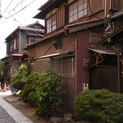 Megurogawa_7