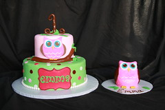 "Owl with tree branch birthday cake • <a style=""font-size:0.8em;"" href=""http://www.flickr.com/photos/60584691@N02/6183907032/"" target=""_blank"">View on Flickr</a>"