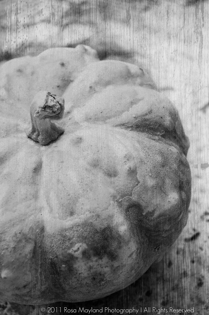 Dried Pumpkin B&W 1 3 bis