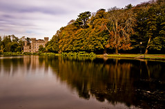 johnstown 2011 (Alan Roche Photography ( new website is now live, ) Tags: ireland lake castle leaves alan scenery wexford tress roche johnstown wexfordlandscape johnstown2011