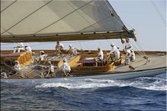 ...and action! (mhobl) Tags: france boat sailing yacht sail regatta saltwater sainttropez mariquita cambriak4