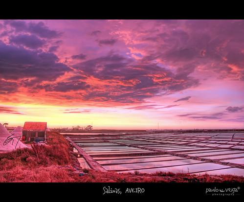 Salinas, AVEIRO by Paulo Veiga Photo