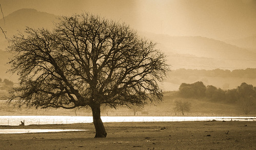 filtrado de luz by carlos_d700