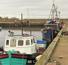 Helmsdale Harbour Today. (Helmsdale.org) Tags: scotland harbour sutherland helmsdale helmsdaleharbour helmsdaleorg