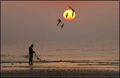 Fishermans Friends (adrians_art) Tags: mist beach birds fog sunrise reflections sussex coast fishing sand gulls shore nets seawater pettlevels