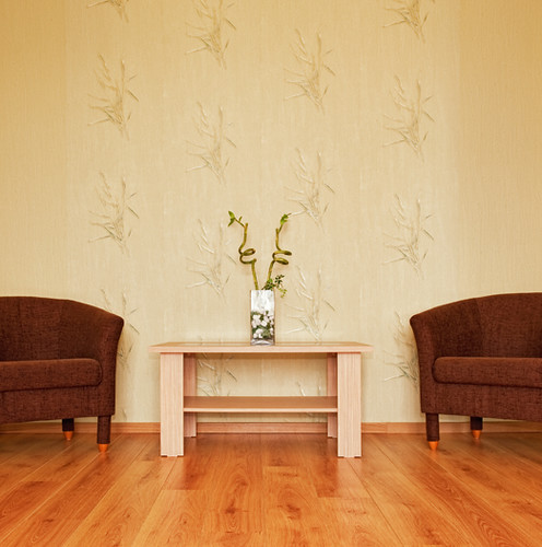 Koydol Bamboo Flooring: Bamboo Options Collection