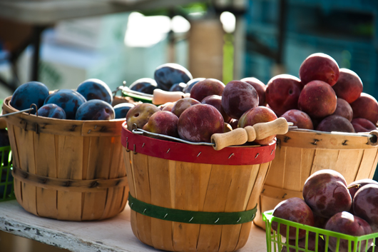 farmers market oct 1_4