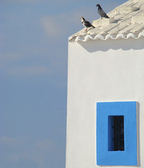 Two in sunshine....... (ubichan - Away A LOT :o() Tags: blue white portugal window sunshine branco azul shadows pigeons sony tiles janela minimalism minimalistic soe ericeira pombos postaisilustradosdeportugal doorsandwindowsaroundtheworld sonydsch9 ubichan postaisilustradosdeportugalthebest aboutiberia shieldofexcellencelevel1 telhos