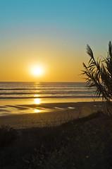 Vuelta Al Color Y La Luz Del Sur (pp diaz) Tags: espaa color luz atardecer mar andaluca playa cielo cdiz rota costaballena playadelinfante