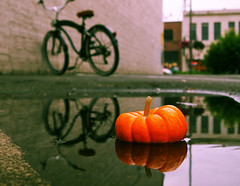 Urban pumpkin reflected () Tags: city urban usa reflection beach water bike bicycle america pumpkin grit puddle miniature photo washington state pacific northwest image empty united picture lot neighborhood photograph local tacoma states cruiser voronaphotography