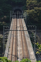 JR Saiin Line Bridge