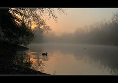 Autumn Sunrise ~ Explored (Liddy5) Tags: mist lake nature fog sunrise landscape dawn albany albanyny