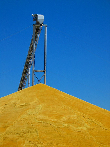 A grain silo in eastern Washington.  AMS has been tracking and gathering datasets for grain transportation for over a decade.  Photo by Sparktography.