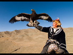 MONGOLIA (BoazImages) Tags: life male asian outdoors asia eagle traditional hunting culture documentary mongolia hunter tradition centralasia kazakhstan kazakh hunters mongolei kazak  altay kazajstn mongoli   abigfave moolistan monglia  boazimages   westernmongolia   lamongolie          documentary