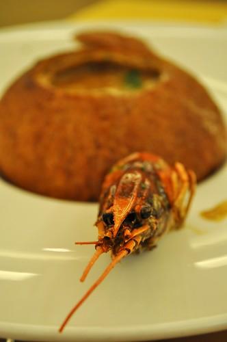 crayfish shell