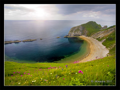 Coast (JKmedia) Tags: door uk pink flowers blue sea wild england sun green beach grass rock coast sand cove south hill wideangle fromabove coastal dorset flare lookingdown channel manowar durdle canoneos40d 15challengeswinner fabcap jkmedia