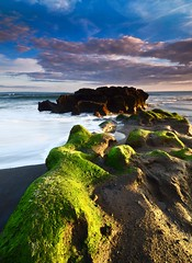 a happy soul (Dyahniar Labenski) Tags: light bali green beach nature stone indonesia asia canggu seseh ikniroviolet dyahniar ahappysoul