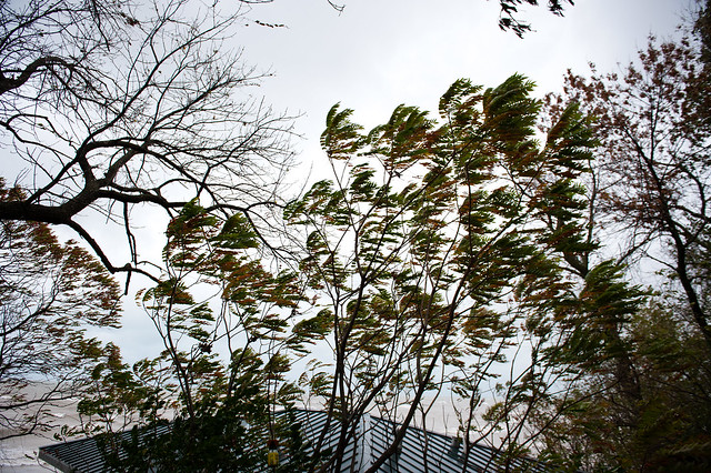 Wind Storm Oct 19 2011-16