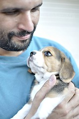 how to say no when a puppy looks at you so tenderly? (Betolandia) Tags: dog love beagle look 35mm puppy amor husband perro cachorro 1855mm mirada tenderness ger puppie ternura 55200mm nikond90 betolandia 20oct2011