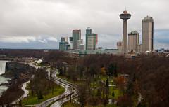 Niagara Falls Skyline (Jason Pratt) Tags: trees canada grass skyline buildings niagarafalls casino skylontower