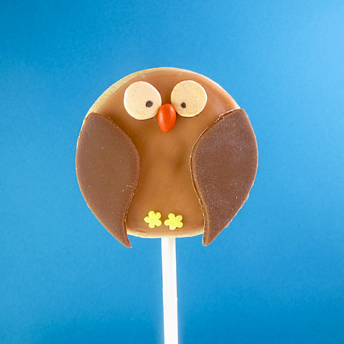 owl cookie pops 2