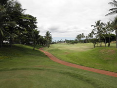 WAIKELE COUNTRY CLUB 178
