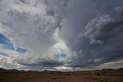 IMG_3376 (Mike Hardiman) Tags: usa clouds monsoon nm anvil animas thunderstorms cumulonimbus stormyskies chihuahuandesert bootheel rainshaft animasmountains