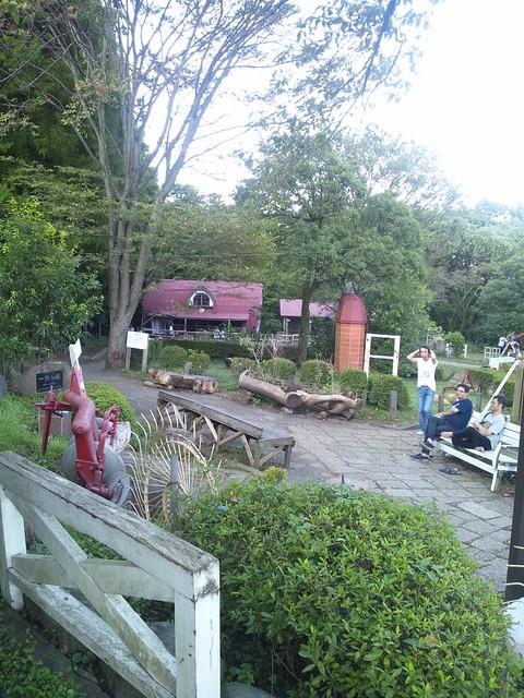 服部牧場内のミニミニ動物園?の写真